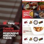 Шаблон Yangxin для китайского ресторана #730