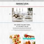 Шаблон Baracuda для кафе №109